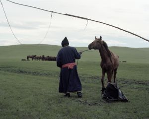 A Mongolian man is leading a horse,2011