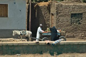 Life along the Nile 007