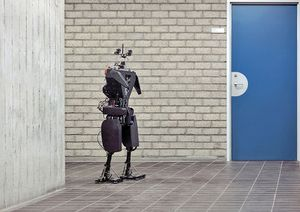 Humanoid robot TUlip,[Eindhoven University], The Netherlands, 2010.