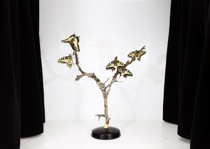Papilio machaon, 2016