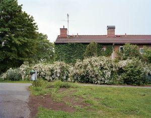 #85 Björkhagen, 2011