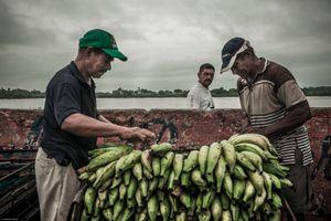 Selling bananas