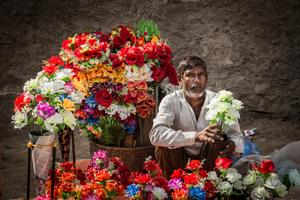 Flowers don't die