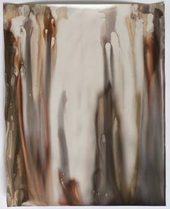 "Room Study No. 49, 2014, unique silver gelatin skiagram + chemigram, 20""x16"""