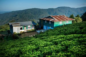"""Farmers houses belonging to """"Home Stay Project""""."""