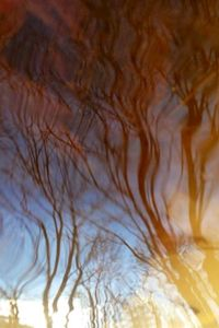 Reflecting Sky 2