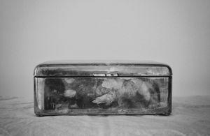 """""""Silver Box"""" © Lisa Blair"""