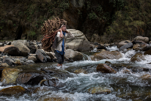 SWEET GOLD - The honey hunters of Nepal