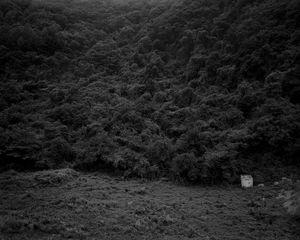 The white shaded backyard_#02 Yeongwol