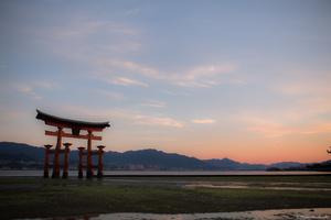 Morning glow of Itsukushima