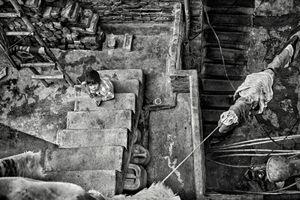 Shivananda Basti, Urban slum, West Delhi_6
