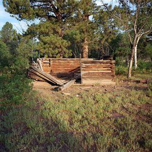 Homestead cabin, Fisher Ranch, Colorado
