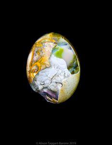 World Egg_ © 2011 Alison Taggart-Barone