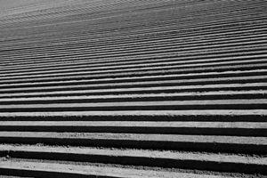 Soil & Order