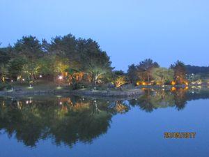 wolji pond at might