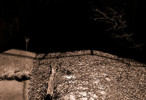 Branching Streams Flow in the Darkness, Middletown, CT, 2012