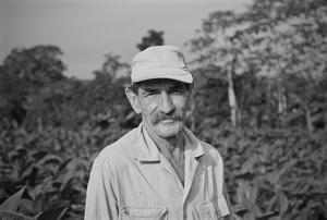 Tobacco Head Farmer