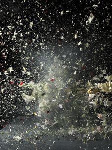 © Ori Gersht, Time After Time: Blow Up No. 82009, Series: Blow Up