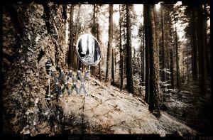 The Mirror   © Seán Duggan