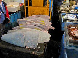 frozen tuna chunks