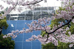 Blue Curtain, Kobe, Japan