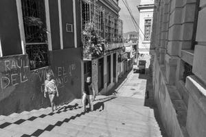 Escalinata de Lauro Fuentes y Corona, 2014