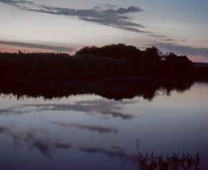 Grey hour. Narew river, Podlasie, Poland