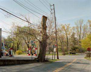 Tarrytown,New York© Patrick O'Hare