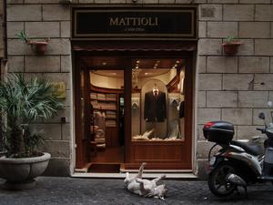 Rome, 29 September 200514:27