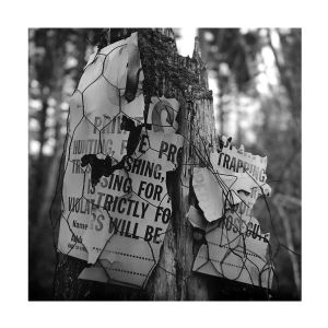 Lost for Words #3 - Sholam Road, Napanoch, NY, USA