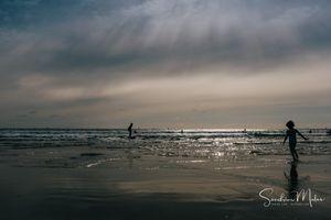 Ocean life5