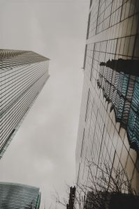 Looking up and reflecting