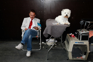 Hundeschau; dog show; concours canin; exposition canine, Bulle