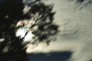 Dark Skies #7