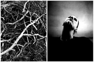 Crawling branches and loose skin sometimes resonates with the feeling of my face.