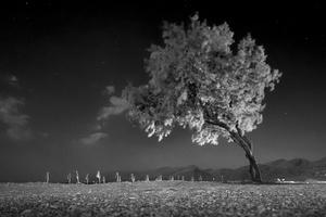 Triopetra, Crete (July 30, 2012)