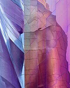 Shades of Purple, Seattle, WA 2012