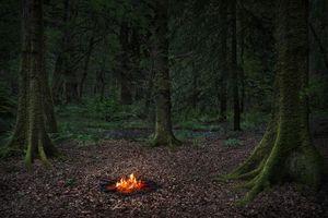 Fires , 2018