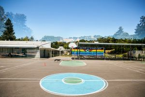 2016 Olive Elementary School, Novato, CA 94945
