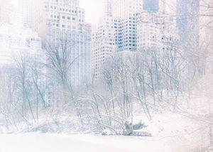 White December.