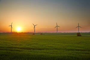 Windmills in the sun set