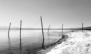 Six Poles