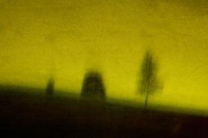 Night Park - 9 © Susan Bein