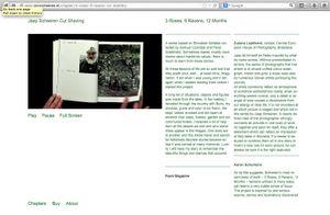 Website #3
