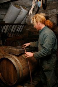 Piping the apple juice into a barrel using gravity