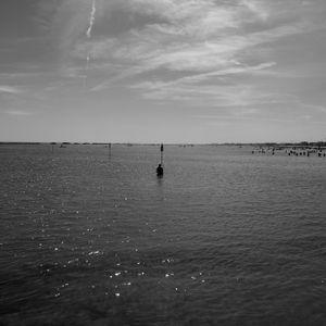 ADayAtTheBeach: Shoreliners#7
