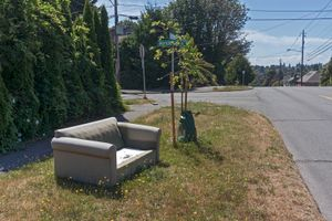Abandoned Sofa #81
