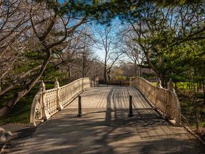 Bridge Early Morning