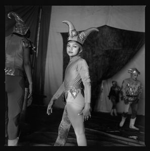 Harlequin © Norma I. Quintana
