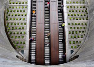 Escalator world